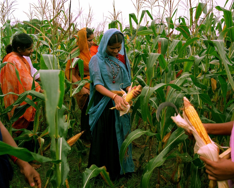 Women learning about agriculture at the Barli Development Institute for Rural Women