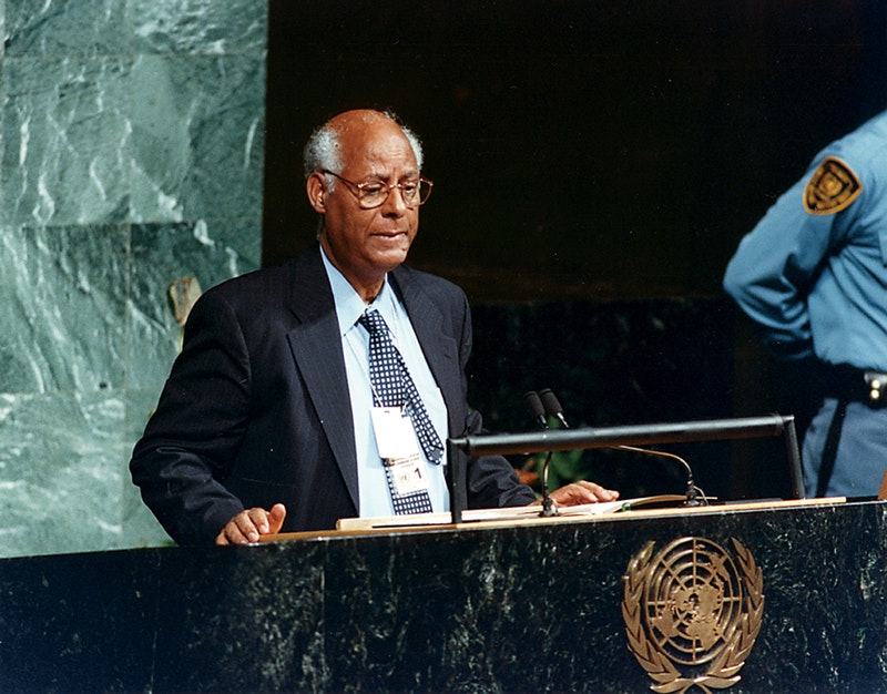 Techeste Ahderom, principal representative of the Bahá'í International Community to